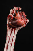 Bloody horror and Halloween theme: Terrible bloody hands with black nails holding a bloody human heart on a black background isolated background in studio — Stock Photo
