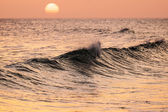 Breaking wave at sunset — Stock Photo