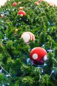 Red ball and light bulb on pine tree  — Stock Photo