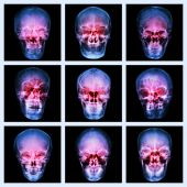 Collection of asian's skull — Stock Photo