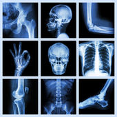 Collection X-ray part of human — Foto Stock