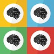 Brain icon ( flat design ) on different color background ( lateral view ) Use for Brain disease ( ischemic stroke , hemorrhagic stroke , brain tumor , etc ) — Stock Vector #75756879