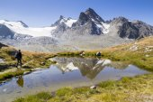 On the outskirts of the glacier — Stockfoto
