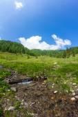 Creek At Mt. Mirnock — Stock Photo