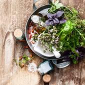 草药和香料 — 图库照片