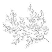 Monochrome Contour Leaves — Stock Vector