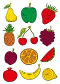 Сolorful hand drawn fruits — Stock Vector