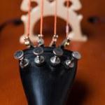Cello detail — Stock Photo #64774417