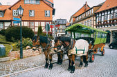 Horse carriage   in Wernigerode, Germany — Stock Photo
