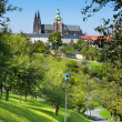 St. Vitus Cathedral in Prague — Stock Photo #57905497