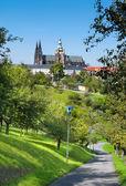 St. vitus katedrali prag — Stok fotoğraf