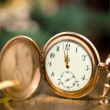 Vintage watch — Stock Photo #58051063