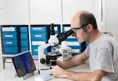 Senior male scientist — Stock Photo