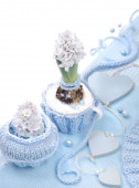 Blue hyacinth with  decorations — Stock Photo