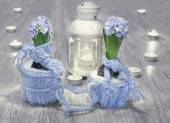 Hyacinths with  decorations — Stock Photo