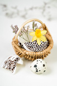 Easter decorations with flowers — Stockfoto