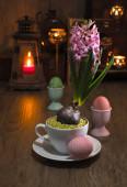 Delicate pink hyacinth — Stockfoto