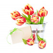 Greeting card and tulips — Stock Photo #68348357