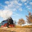 Historical steam train on Rugen in Germany — Stock Photo #73307759