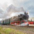 Historical steam train on Rugen in Germany — Stock Photo #73307765