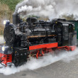 Historical steam train on Rugen in Germany — Stock Photo #73307843