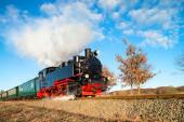 A vapor histórico trem em Rugen na Alemanha — Fotografia Stock