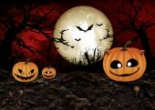 Halloween Festival Background — Foto de Stock