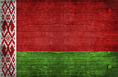 The National Flag of the Belarus — Stock Photo