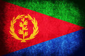 The National Flag of the Eritrea — Stock Photo