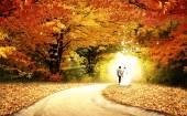 Wedding with nature beautiful background — Stock Photo