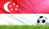The National Flag of Singapore — Stock Photo