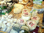 チーズ ショップ — ストック写真