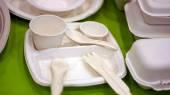 Biodegradable foam — Stock Photo
