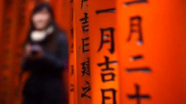 Red gate torii at Fushimi Inari shrine temple — Stock Video