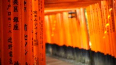 Red gate torii at Fushimi Inari temple shrine — Stockvideo
