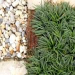 Garden path stone and grass — Stock Photo #68600719