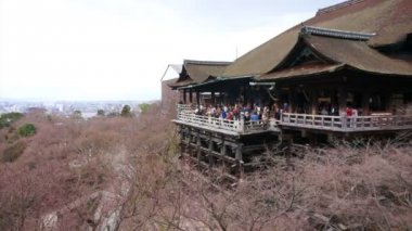 Tourists visit Kiyomizu dera temple — Stock Video