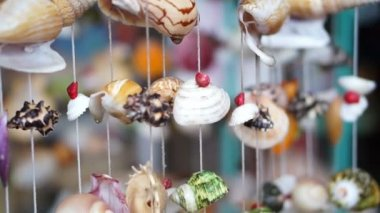 Wind chimes seashell handmade craft curtain — Stock Video