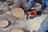 A chainsaw to cut the tree — Stock Photo