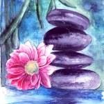 Постер, плакат: Lotus and stones in water