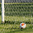 Europa League ball in net during Paok training in Thessaloniki, — Stock Photo #52566721
