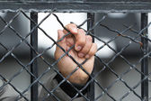 Hand of a prisoner grabbed the bars of the prison — Stock Photo