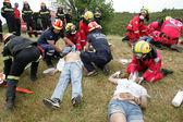:Pan-European exercise of the Fire Brigade — Stock Photo