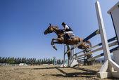 Bilinmeyen sürücü yuvarlak binme rekabet maçlar sırasında bir at üzerinde — Stok fotoğraf