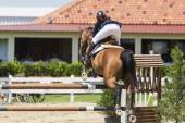 Unknown rider on a horse during competition matches riding round — Stock Photo