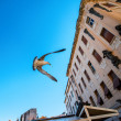 Seagull with fish flying — Stock Photo #66075431