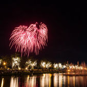 Grote vuurwerk in de hemel over een parken — Stockfoto