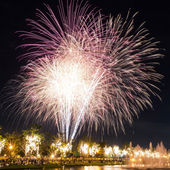 Big fireworks in the sky over a parks — Stock Photo