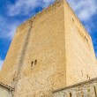 Medieval tower — Stock Photo #52744421