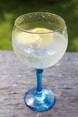 Outdoors Gin tonic — Stock Photo